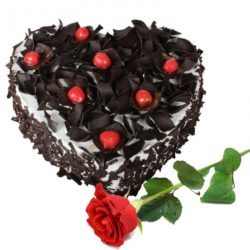 Rourkela Blackforest Cake